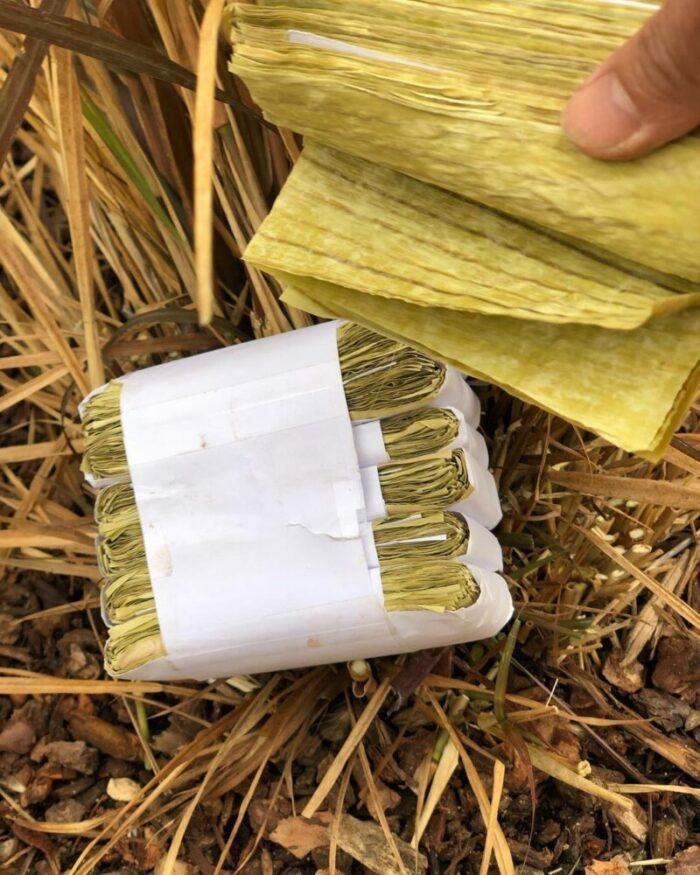 Million Bananas Non-Tobacco Leaves